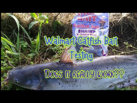 Walmart Catfish Bait Testing | Does It Work Or Not??