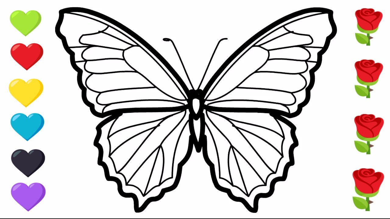 rainbow color butterfly| learn how to draw| COLORING PAGES FOR KIDS ...
