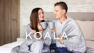 Koala Weighted Blanket