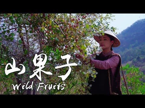 丁香、酸李子、滇橄榄,这些山里的果子你们吃过吗?【滇西小哥】