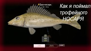 Река Вьюнок. Трофейный Ёрш-носарь. Русская рыбалка 4