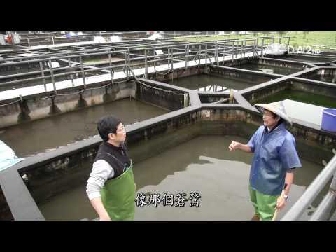 20120620小人物大英雄第24集-大智若魚