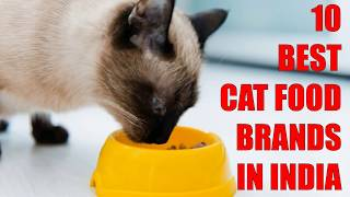 10 Best Cat Food Brands in India | Animals Unlimited | Sameer Gudhate
