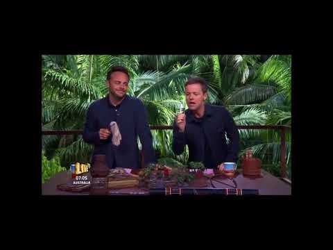 Dennis Wise jokes and Puns - I'm a Celebrity get me out of here! 2017