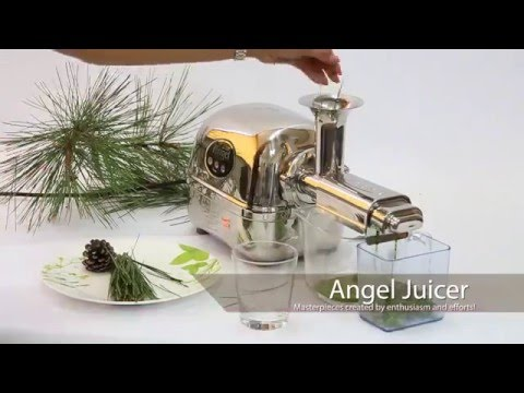 extracteur de jus angel twin gear juicer youtube. Black Bedroom Furniture Sets. Home Design Ideas