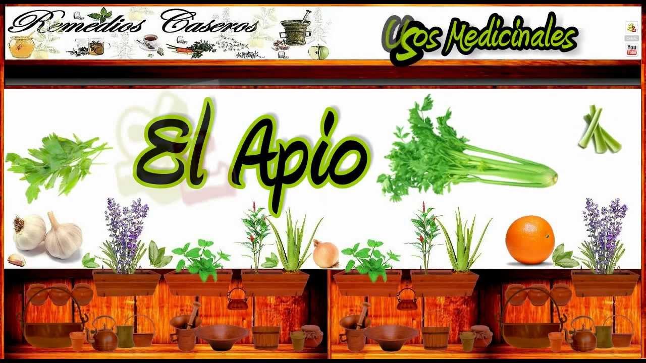 acido urico valores altos como se forma el acido urico en los insectos frutas y verduras para eliminar el acido urico
