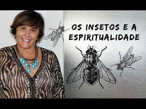 Os Insetos e a Espiritualidade!!