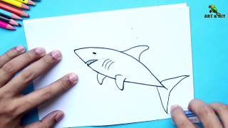 ✅ How  to Draw a Shark easily ॥ Shark Fish Drawing in 3 easy steps