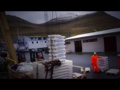 The Faroe Islands Fishing and Aquaculture Industry