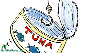 Která značka konzervovaného tuňáka obsahuje nejvíce rtuti?
