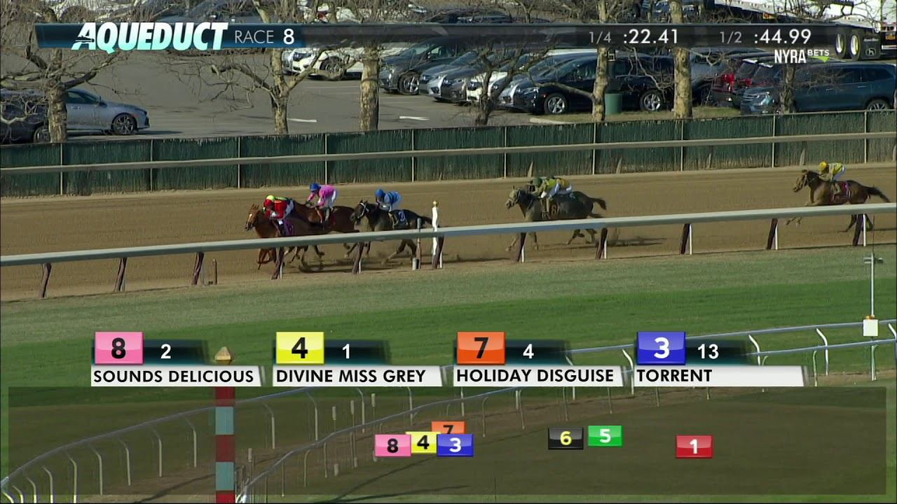 Holiday Disguise - 2018 - The Distaff Handicap