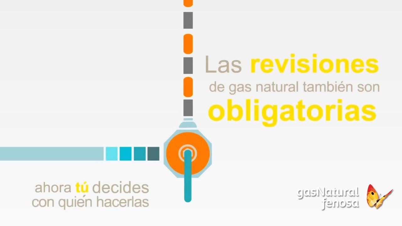Lujo revisiones de empresas modelo colecci n de for Revision gas butano empresas autorizadas