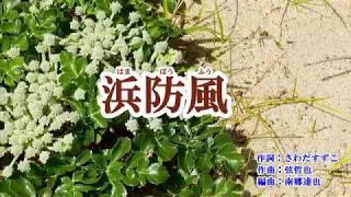 新曲「浜防風」山崎ていじ カバー 2019年1月23日発売