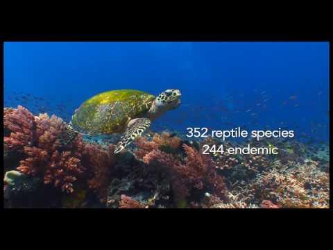 CMS COP12 Philippines