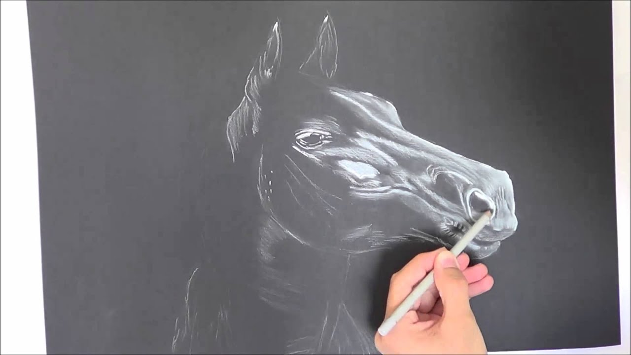 Drawing A Horse On Black Paper