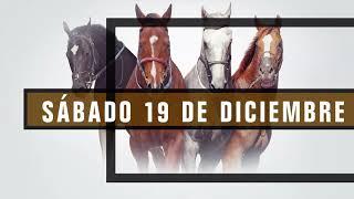 Vidéo de la course PMU TANGA RUBIA