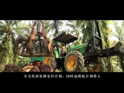 Monspace Multinational Corporation Corporate Video