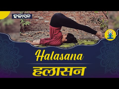 halasana-(plough-pose)-|-हलासन-|-international-day-of-yoga-2020-|-yog-rahasya-|-satya-bhanja