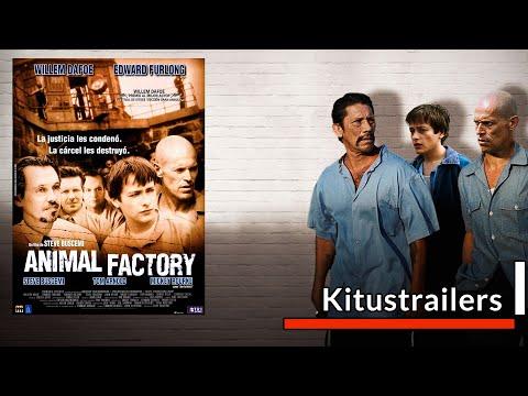Animal Factory Trailer (Castellano)