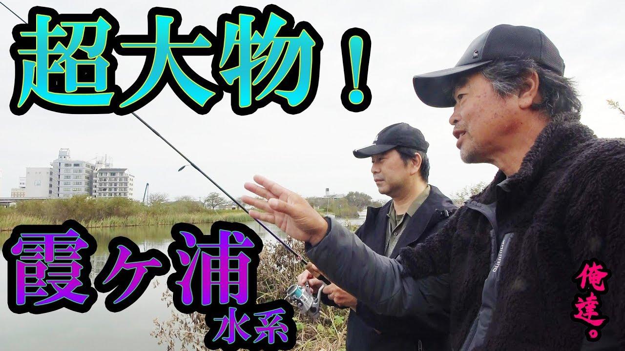 BMCメンバーおすすめ動画 Vol.01