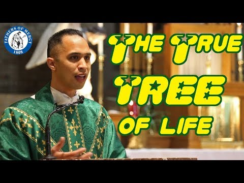 The True Tree of Life: The Cross of Christ