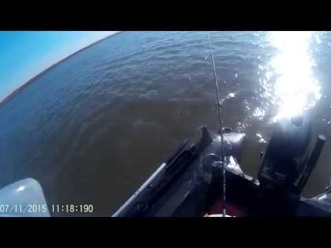река раздольная приморский край ловля красноперки