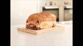 Pug Bread - Real Funny Pictures