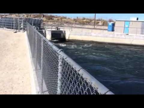 Palmdale ca. Aquaduct fishing