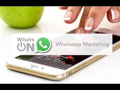 Módulo 7 - Crea Tus Chatbots En WhatsON (Chatbot & Whatsapp Marketing)