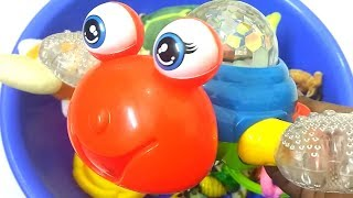 Learn wild Animals Toys for Children Zoo Forest Animals Names Learn Colors for Kids