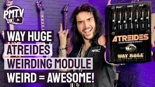 Way Huge Atreides Anąlog Weirding Module Pedal Demo - Let's Get Weird!