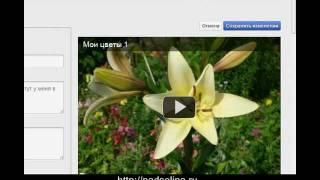 Как разместить видео на YouTube, а затем на своем блоге.(http://nadselina.ru Если вы еще не знаете, как быстро зарегистрироваться на YouTube, как разместить видео на YouTube, как..., 2011-12-07T13:32:33.000Z)