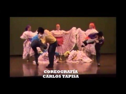 8 DANZAS ZOO-MORFAS DE COLOMBIA