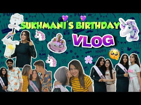 Sukhmani's Birthday Vlog / Mr & Mrs Narula / Big Kids ❤️