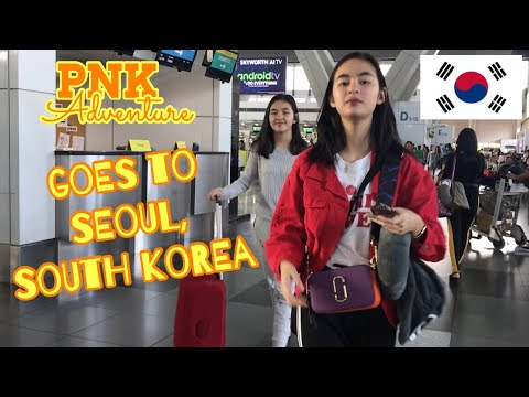 GOES TO SEOUL, SOUTH KOREA | PNK Adventure