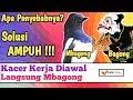 Kacer Main Sebentar Terus Mbagong  Mp3 - Mp4 Download