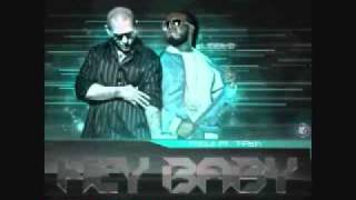 hey baby (remix) (merengue electronico) pitbull ft t-pain
