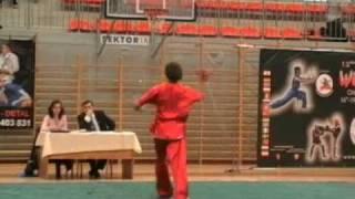 Wushu Tübingen @ the 12th European Wushu Championships