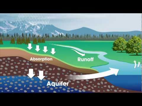 Water and You: The Water Cycle