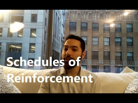 ABA Therapy: Schedules of Reinforcement