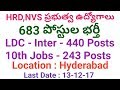 Minstry HRD,NVS 683 LDC,Assistants Posts Recruitment Notification 2017