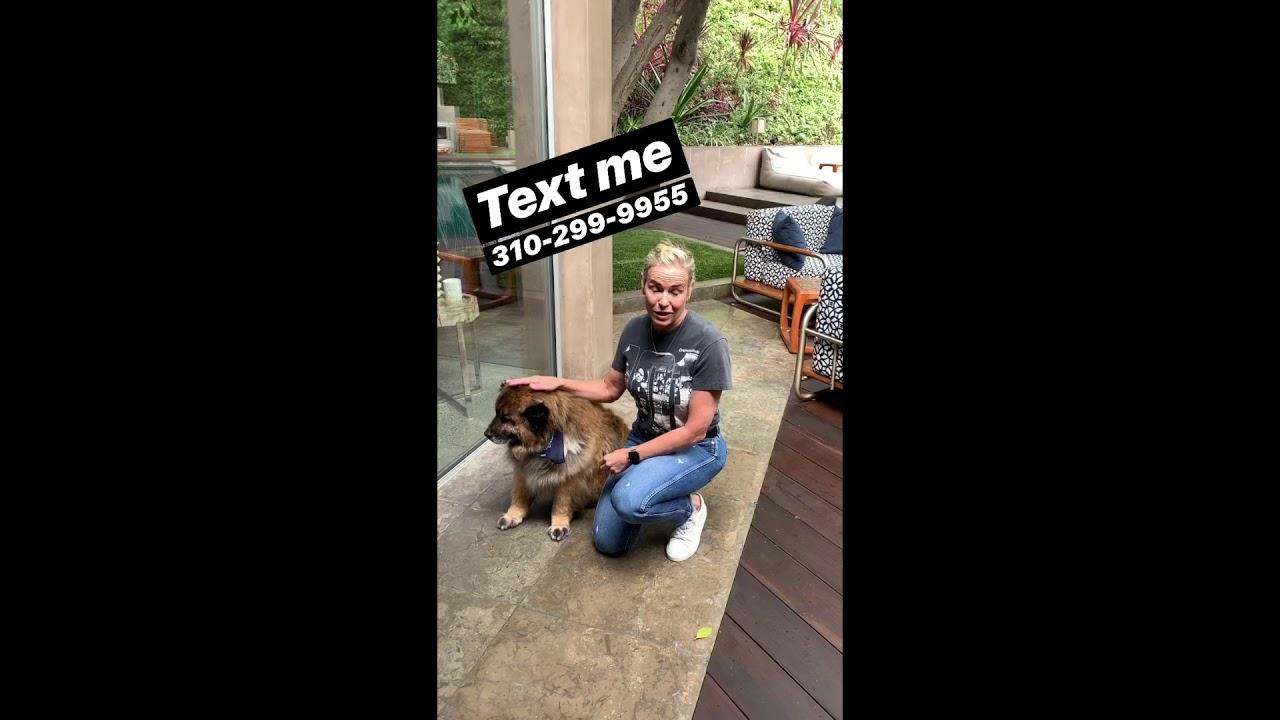 Text Chelsea Handler | 310-299-9955