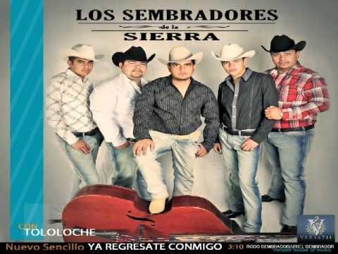 Los Sembradores De La Sierra 2012 Don Ranch