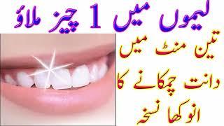 Teeth Whitening In Urdu | Lemo Main 1 Cheez Milao 3 Mint Main Dant Chamkany Ka Anokha Nuskha