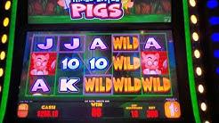Three Little Pigs Bonus Major Jackpot & Fu Dao Le Slot Bonus