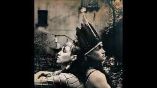 CocoRosie - Bear Hides and Buffalo (Lyrics)