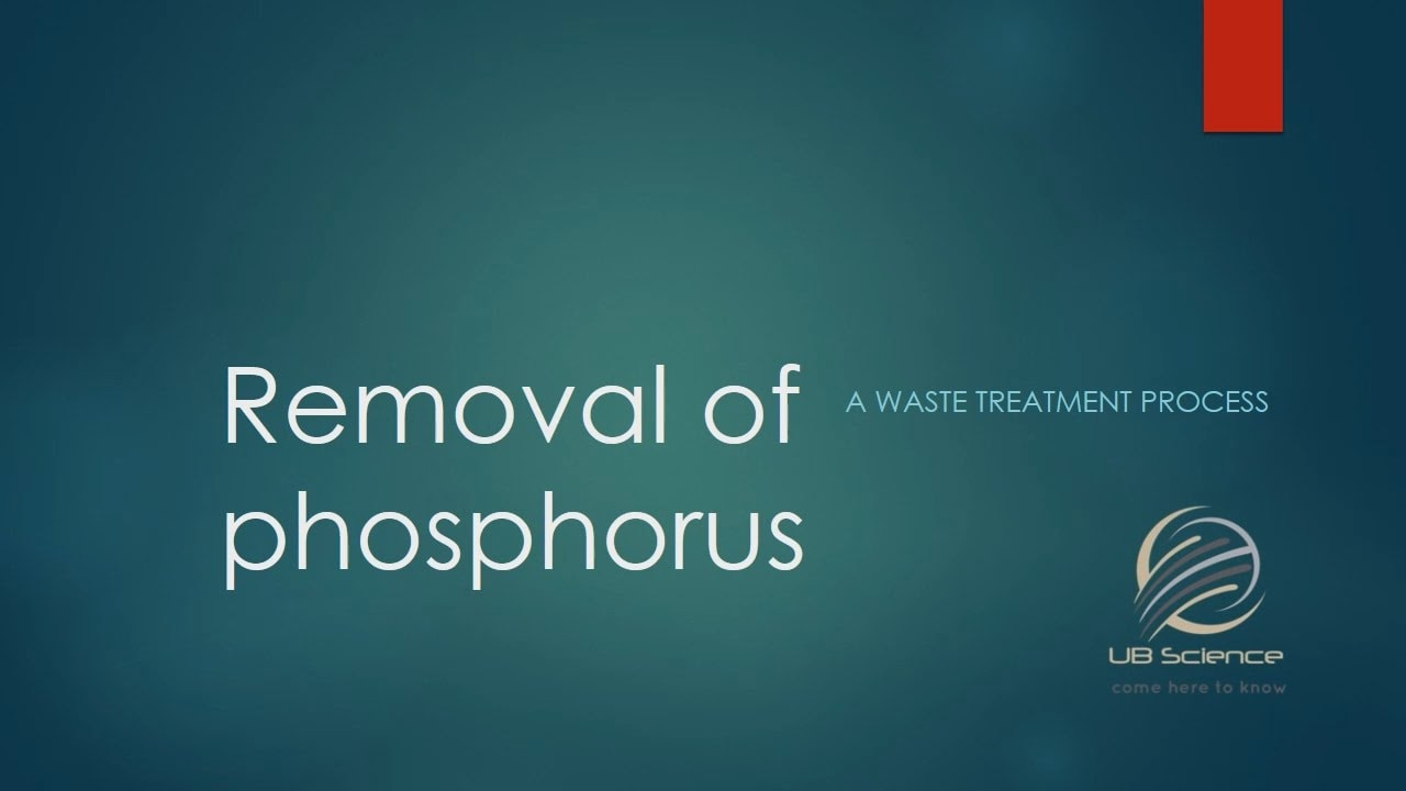 Removal of phosphorus A waste water treatment process