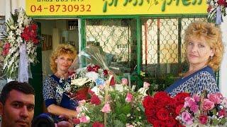 Зелёный Рынок (Цветы и лечебные травы)