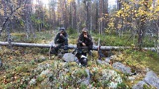 Тайга у Белого моря. Часть 2. Охота и рыбалка в Карелии.