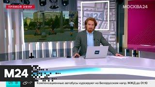 Минтранс внес поправки в ПДД - Москва 24